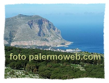 Vivaio Forestale Sicilia : Aree attrezzate in sicilia scheda informativa by palermo web
